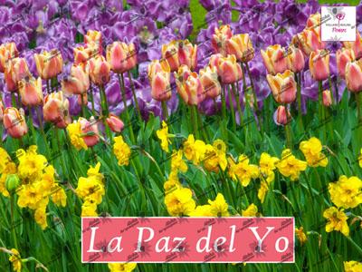 Poster LA PAZ DEL YO