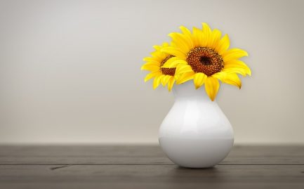 sunflower-3939318_640