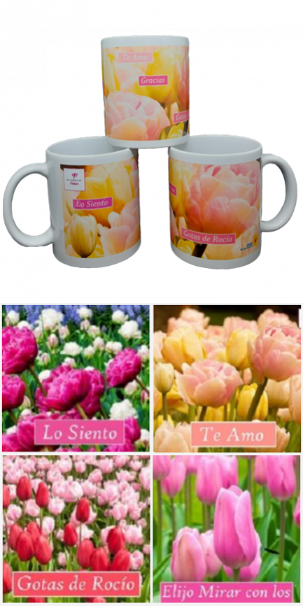 Pack-Tazas-posters-432×864