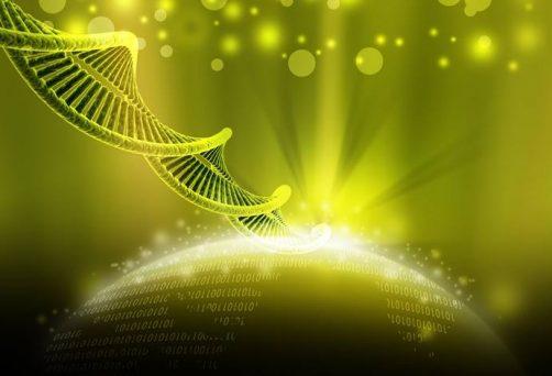 MEDITACIÓN ONLINE EN DIRECTO – ACTIVANDO LAS CAPAS DEL ADN CON HO'OPONOPONO – MIÉRCOLES 29 DE SEPTIEMBRE A LAS 20H